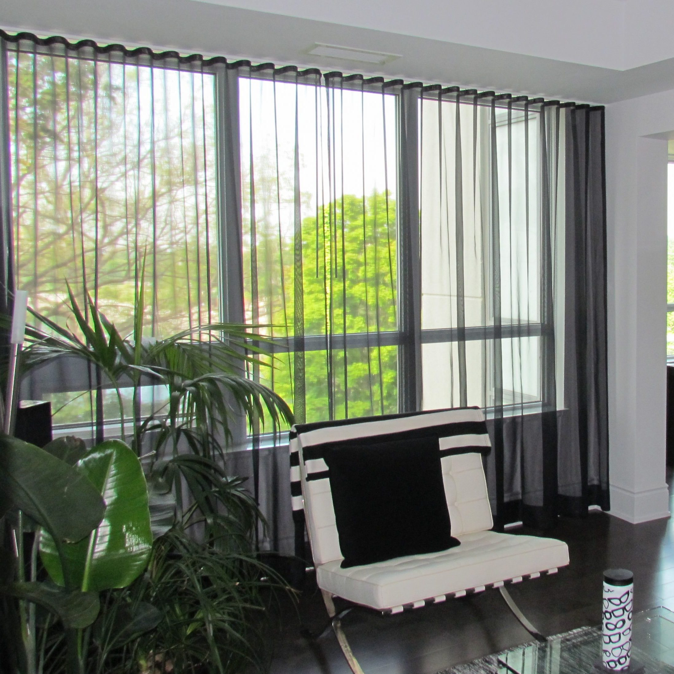 Sheer Curtains Black Living Room